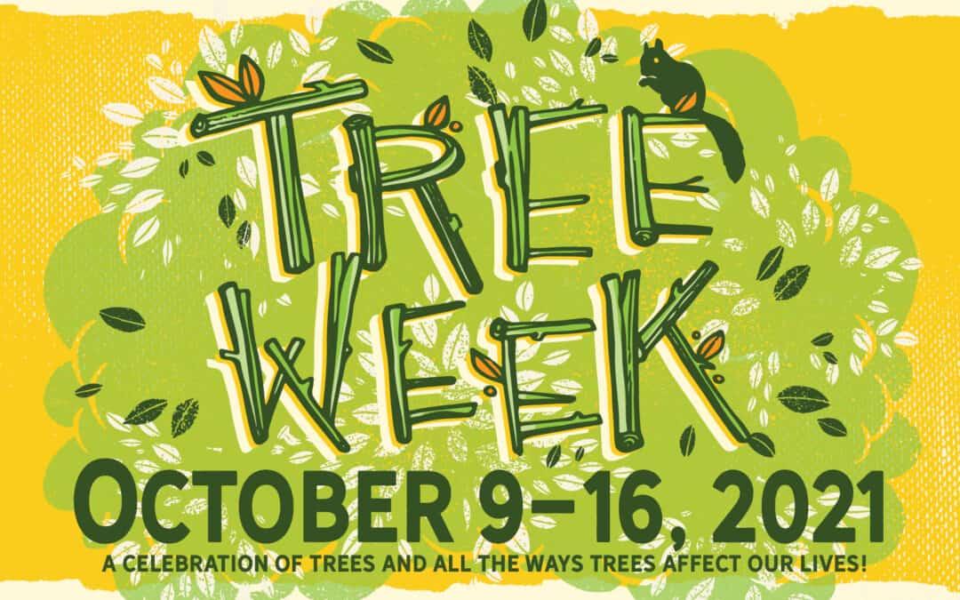 Berea to Celebrate Tree Week October 9-16, 2021